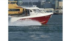 Sea Fox fishing Charter