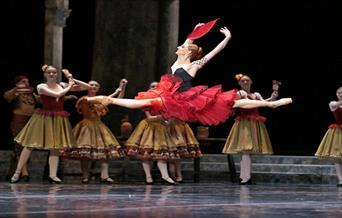 A snapshot of the ballet show with a dancer in mid-air