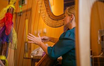 ABC Teddy Bear Concerts: The Harp - Beauty and Mystery