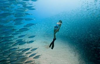 Ocean FF - Photo by Travis Burke of Freediver Chelsea Yamasee
