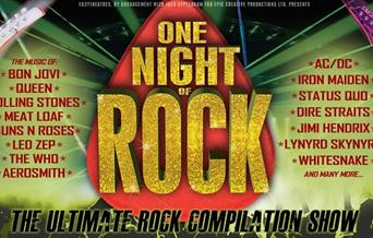 Image for One Night of Rock